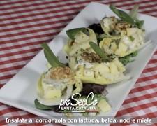 Ensalada de gorgonzola con endivia, manzana, pera, nueces, miel y canela
