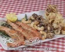 Frito mixto de calamares, gambas y pulpo
